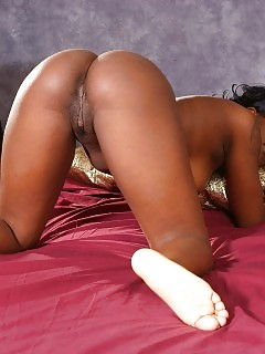 Passion - Ebony Girls Interracial Femdom - Atk Exotic